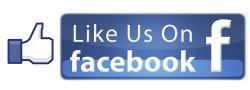 Like Us.jpg