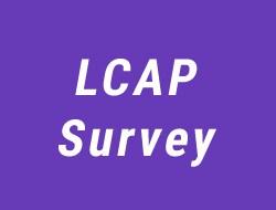 2018-19 LVUSD LCAP Survey