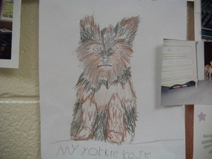 A drawing of a student's pet dog.
