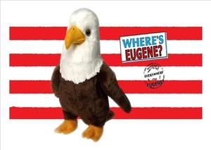 Stiff animal, Eagle on a striped postcard