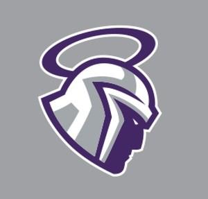 Mascot - Gray.PNG