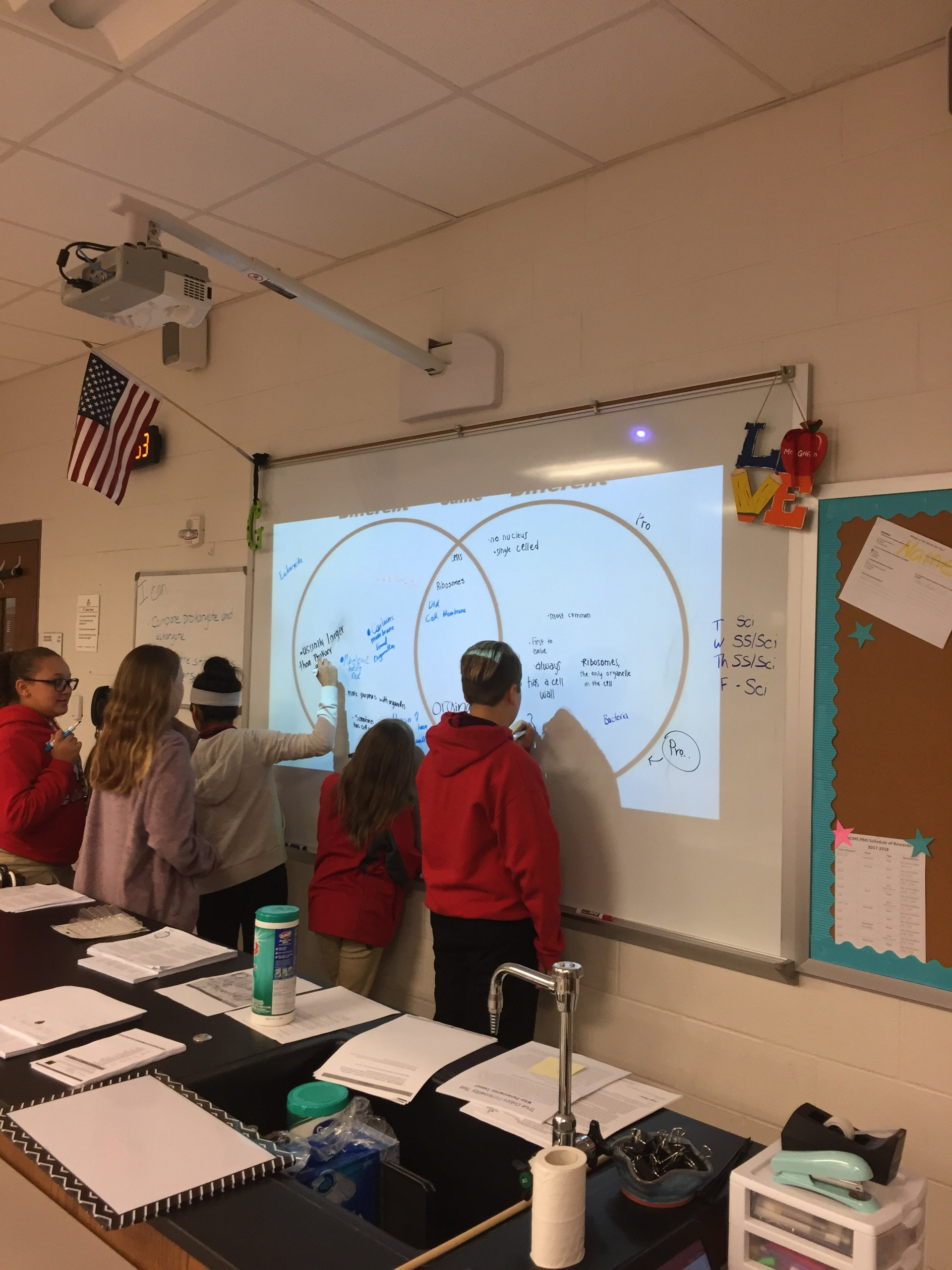 Worked as a class to compare Prokaryotic and Eukaryotic Cells