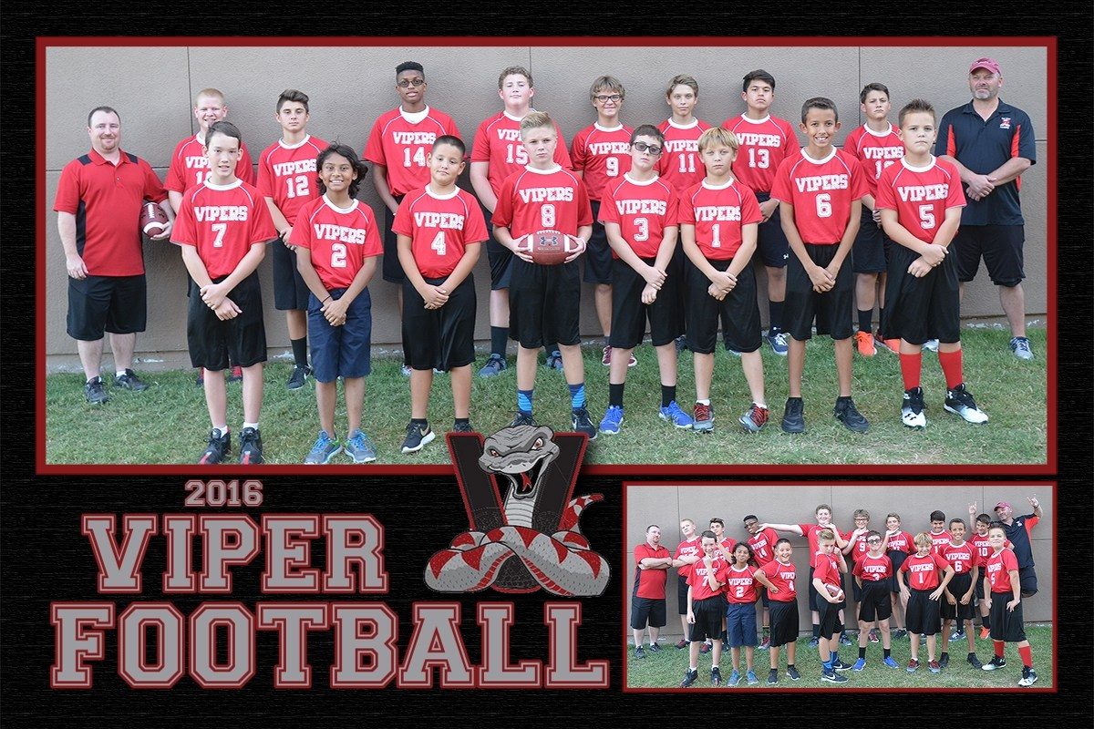 2016 Vipers Flag Football
