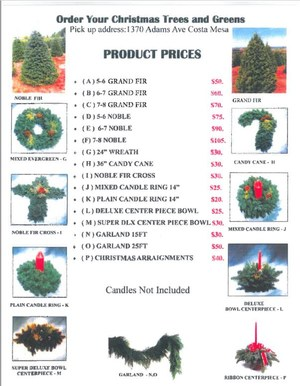 Christmas Tree fundraiser 2016.JPG