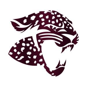 Copy of Jag Logo.jpg