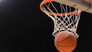 Ball in the hoop.jpg