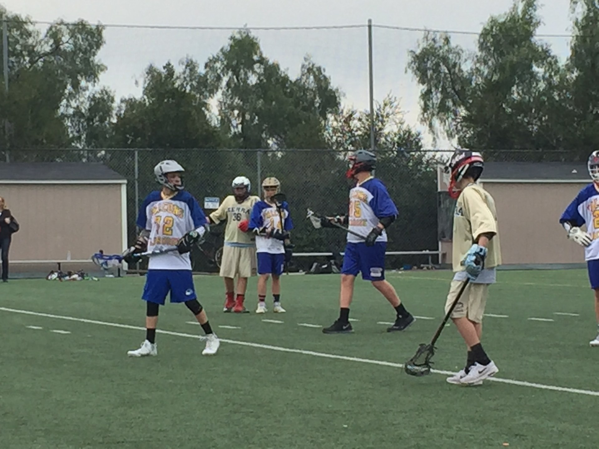 Boys playing lacrosse