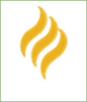 Indiana Disability Rights Logo