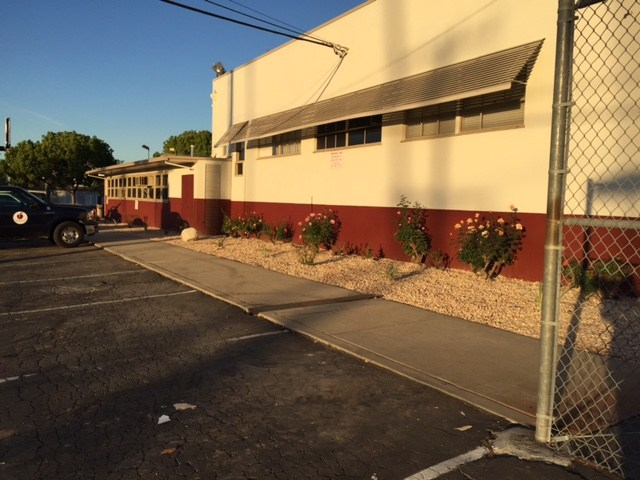 New bushes in front of the district office