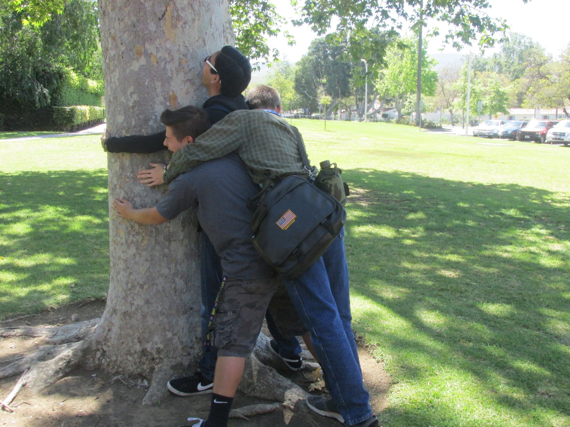 Tree Hug Time