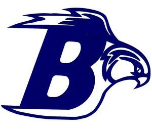 bayhawks logo1 (1) (1).jpg