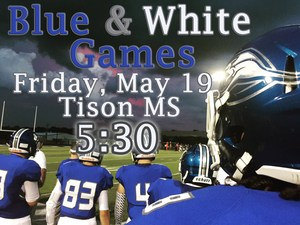 Blue and White Games.jpg