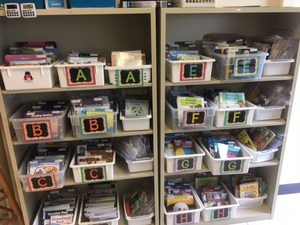 Guided reading bookshelves