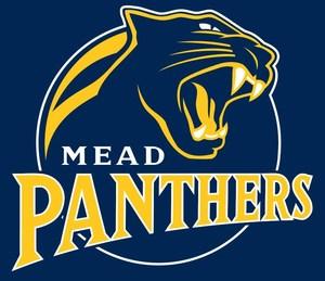 Mead Logo Blue.jpg