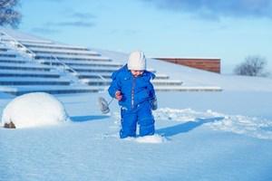 snow-661642_960_720.jpg
