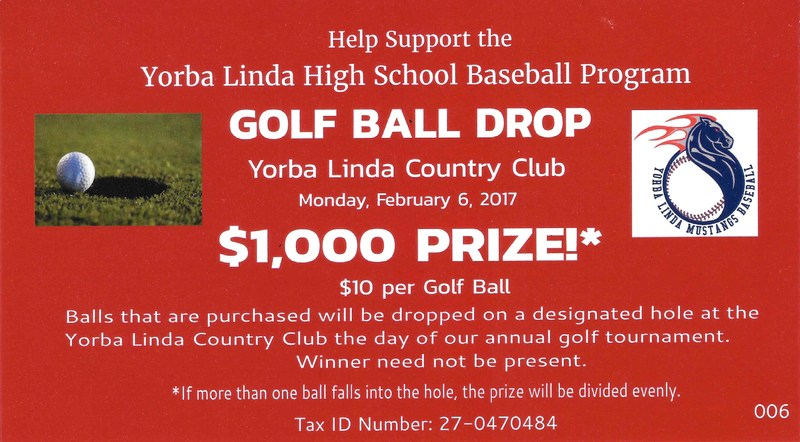 baseball fundraiser flyer