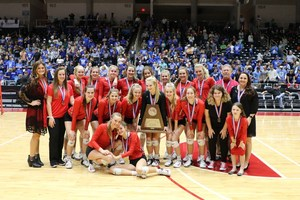 Volleyball State Silver Medalists 2017