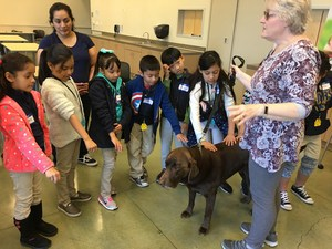 students pet dog led by humane society volunteer