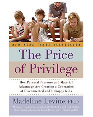 The Price of Privilege book cover