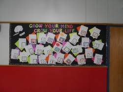 Mind Growth Pictures made by students