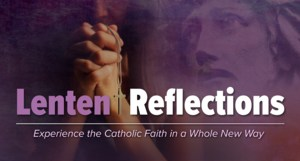 LEnten Reflections.png