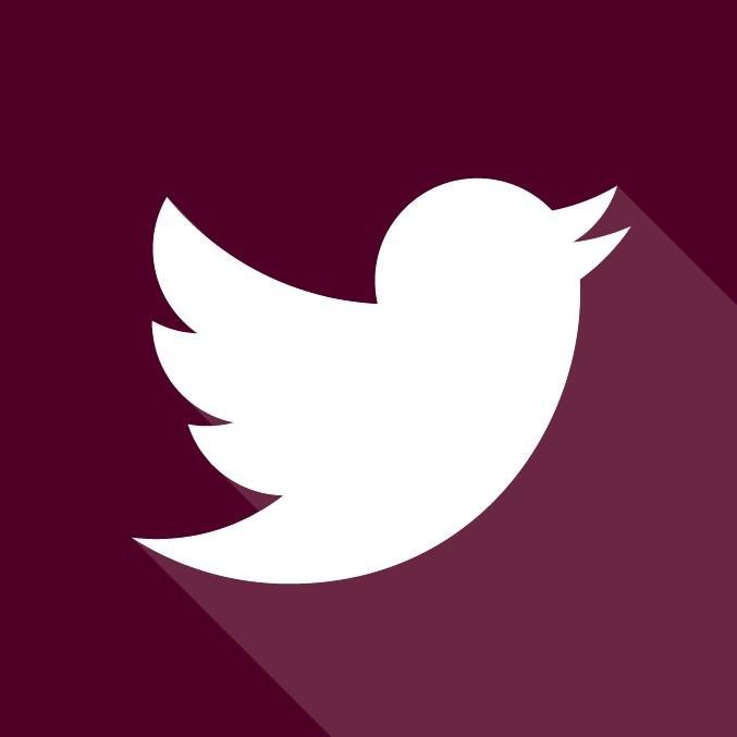 maroon twitter icon