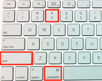 Hold down Command, shift and the 3 key at the same time.