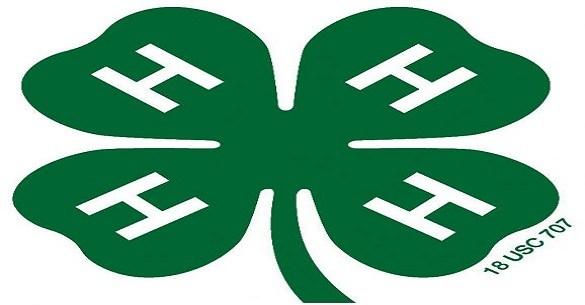 4H Club Logo