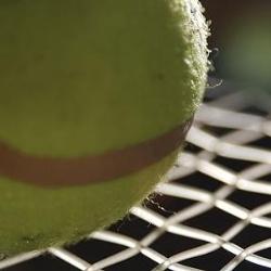tennis_s800x800.jpg