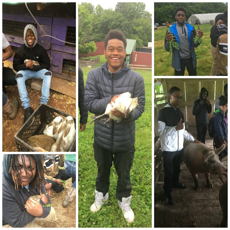 ACAD Students Become Farmers for a Day Thumbnail Image