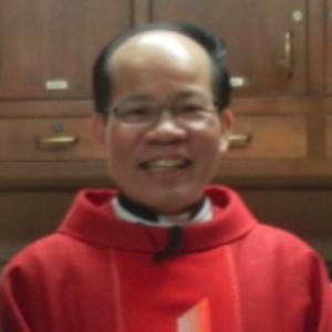 Trung Mai, SVD's Profile Photo