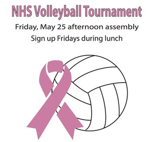 NHS volleyball flyer