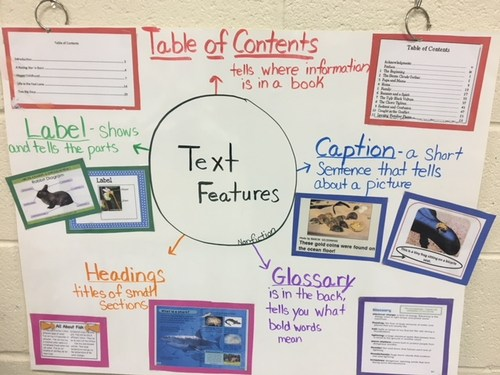 Test Feature Anchor Chart