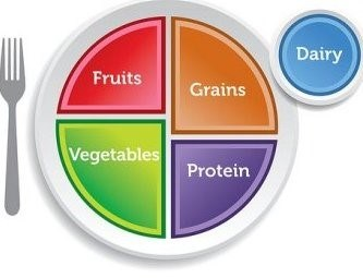 plate pie chart with five food groups: fruits, vegetables, protein, grains, and dairy
