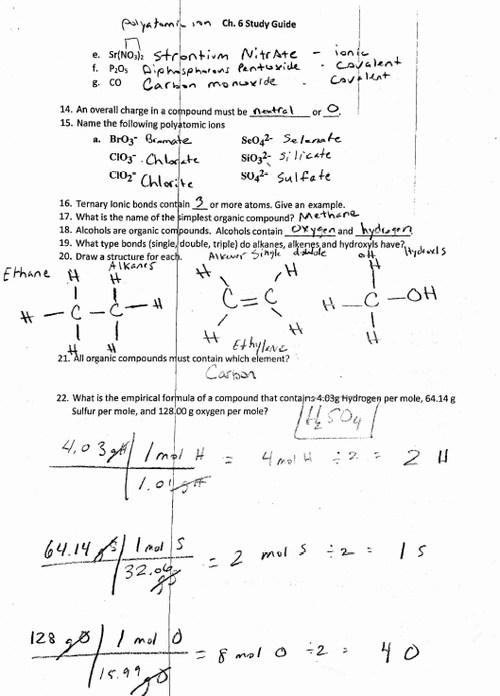 Ch 6 Study Guide Key Pt 2