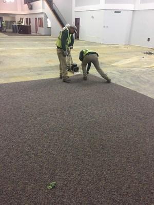 Pulling Carpet.jpg
