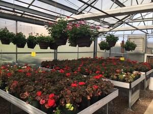 FFA Greenhouse
