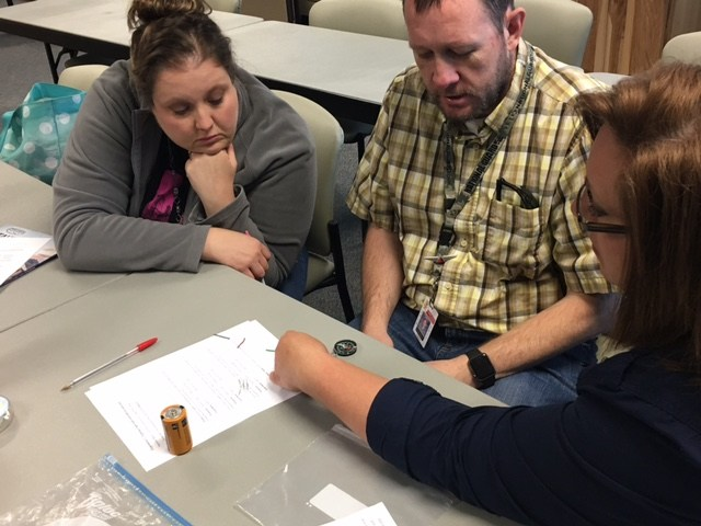 Teachers doing science