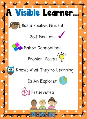 visible learner.jpg