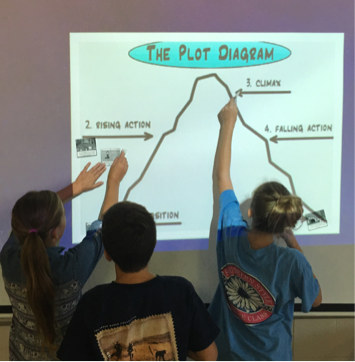 Examining a plot map