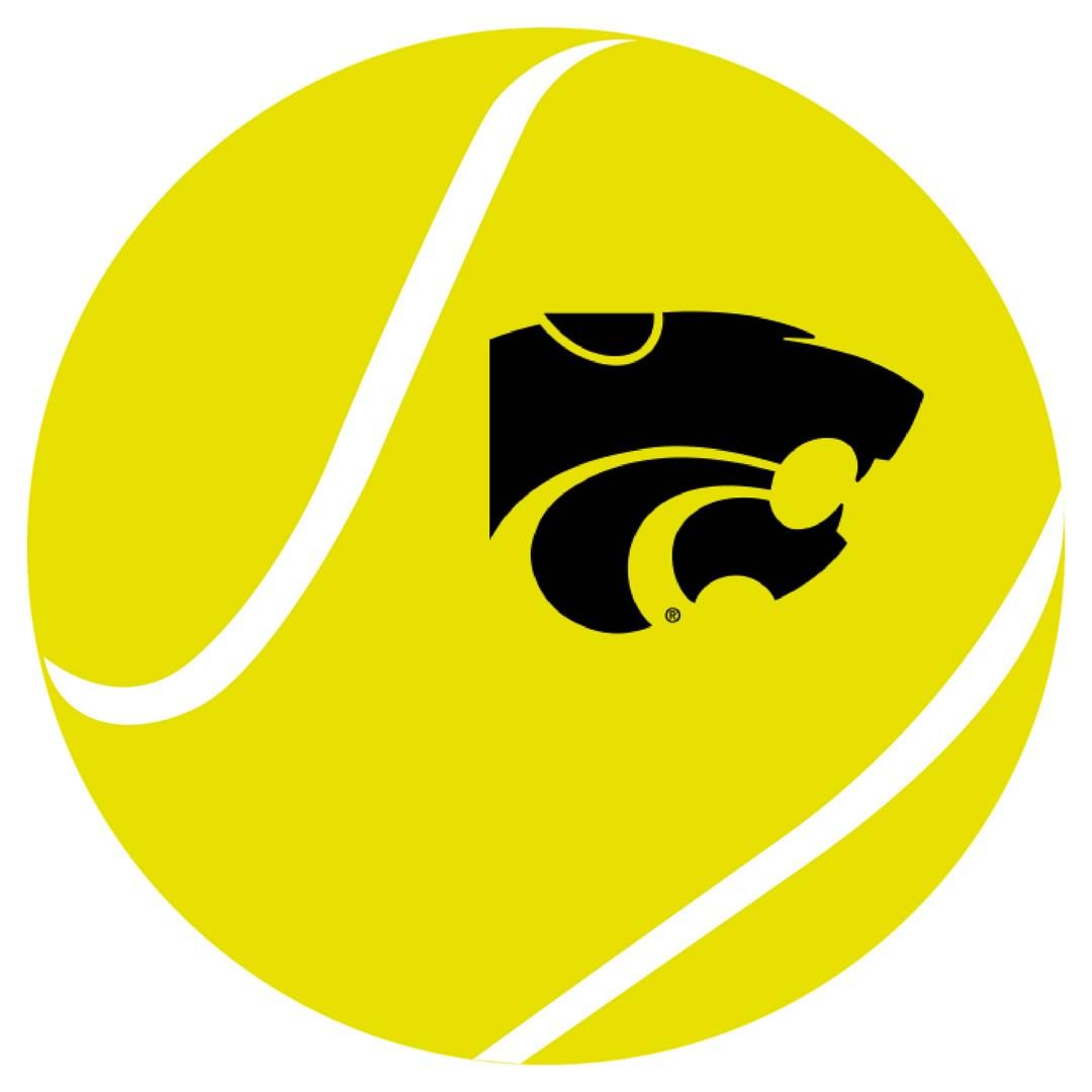 Tennis ball with powercat