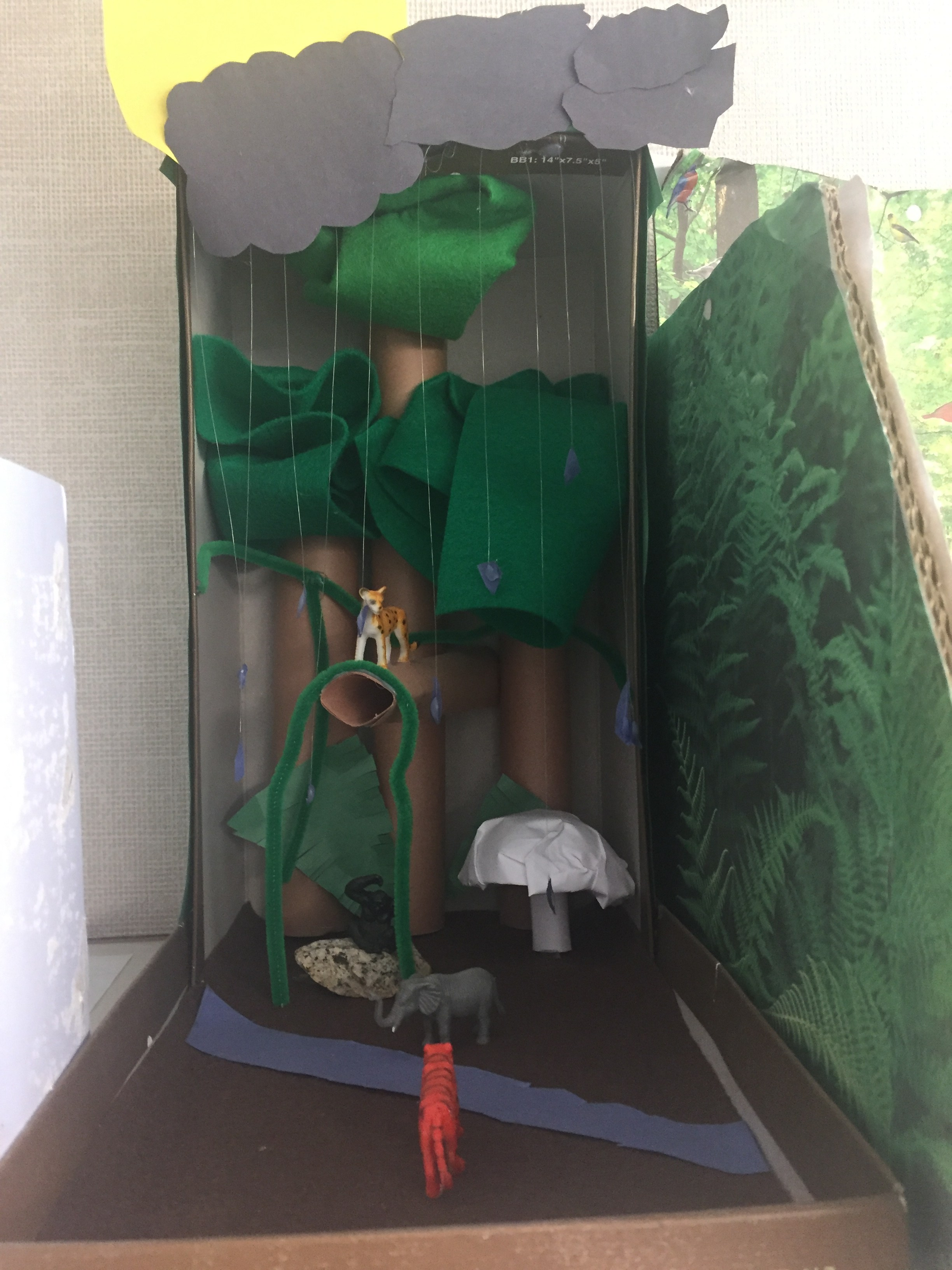 Ecosystem Diorama – Mrs  Michelle Turner – Olive Drive