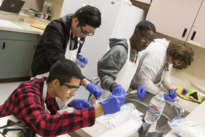 Student scientists at Valley View HS