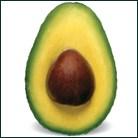 avocado-banner-download.jpg