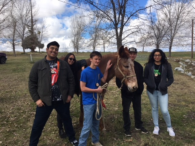 GVHS students learning about nature during a recent trip to the Wind Wolves Nature Preserve