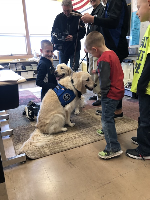 Comfort Dogs Make a Surprise Visit to School Thumbnail Image