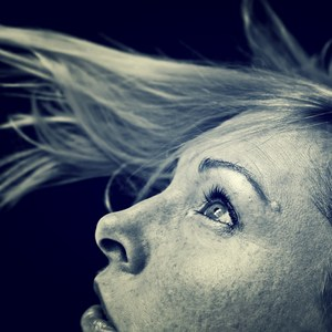 Diane Bolinger's Profile Photo