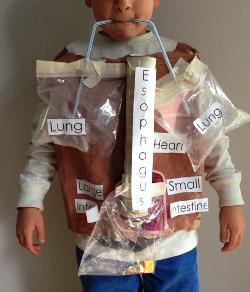 Kindergarten_BodyStudies.jpg