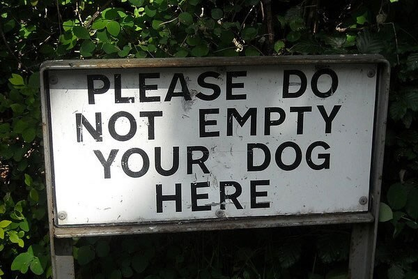 Please do not empty your dog here.