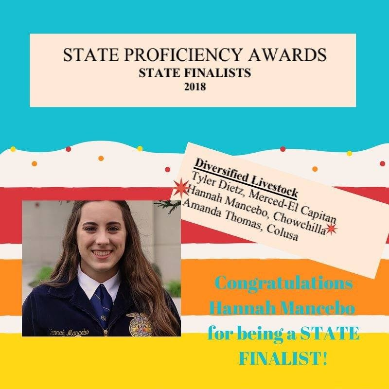 Hannah Mancebo is a state finalist in diversified livestock production for Chowchilla FFA